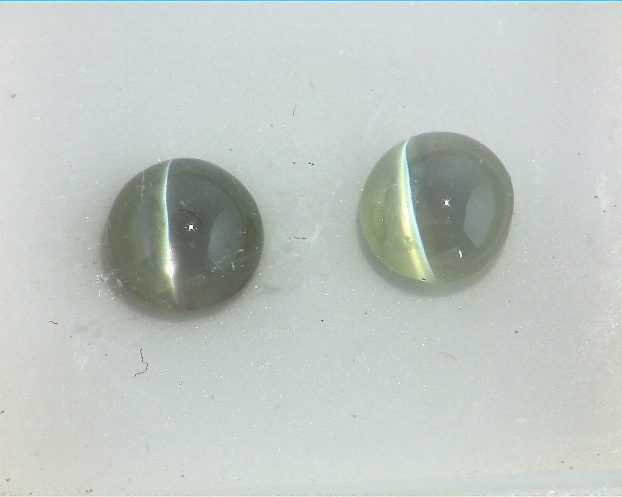 Cats Eye Natural Genuine Gemstones Matched Pair GSG,130