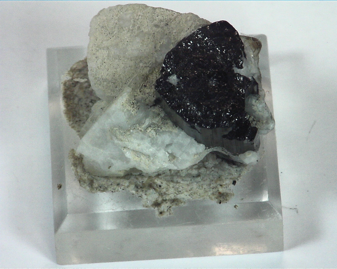 Quarts Crystal with Black Tourmaline Crystals,MS,786