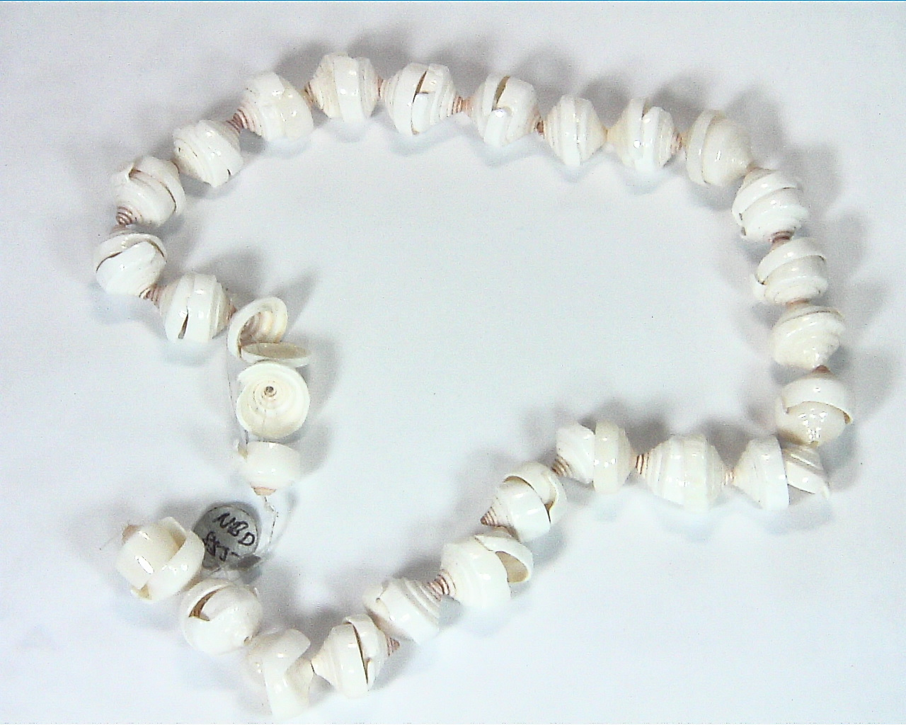 Sea Shell Necklace NBD,855 2